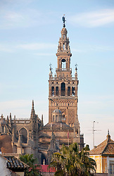 View of Sevilla cathedral