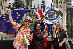 © Licensed to London News Pictures. 17/07/2018. London, UK. Anti-Brexit protesters outside Parliament as debate over Prime Minister Theresa May's Chequers plan continues. Photo credit: Rob Pinney/LNP