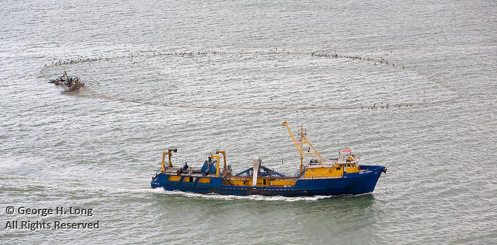 Daybrook Fisheries, Inc.