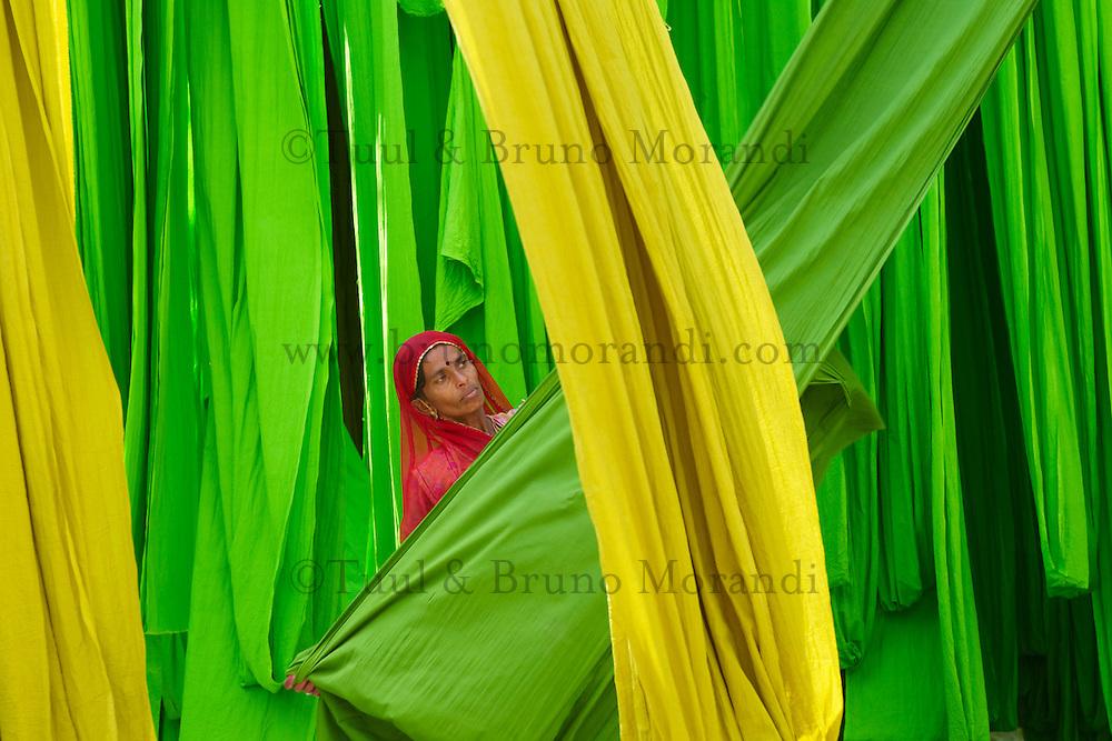 Inde, Rajasthan, Usine de Sari, Les tissus sechent en plein air. Ramassage des tissus secs par Misri, 30 ans, avant le repassage. Les tissus pendent sur des barres de bambou. Les rouleaux de tissus mesurent environ 800 m de long. // India, Rajasthan, Sari Factory, Textile are dried in the open air. Collecting of dry textile by Misri, 30 years old. The textiles are hung to dry on bamboo rods. The long bands of textiles are about 800 metre in length.