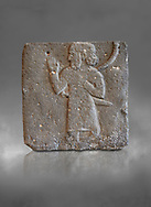 Hittite relief sculpted orthostat from a processing person from Tell Ahmar ancient Til Barsip, Syria, iX cent BC, Louvre Museum. . Grey background