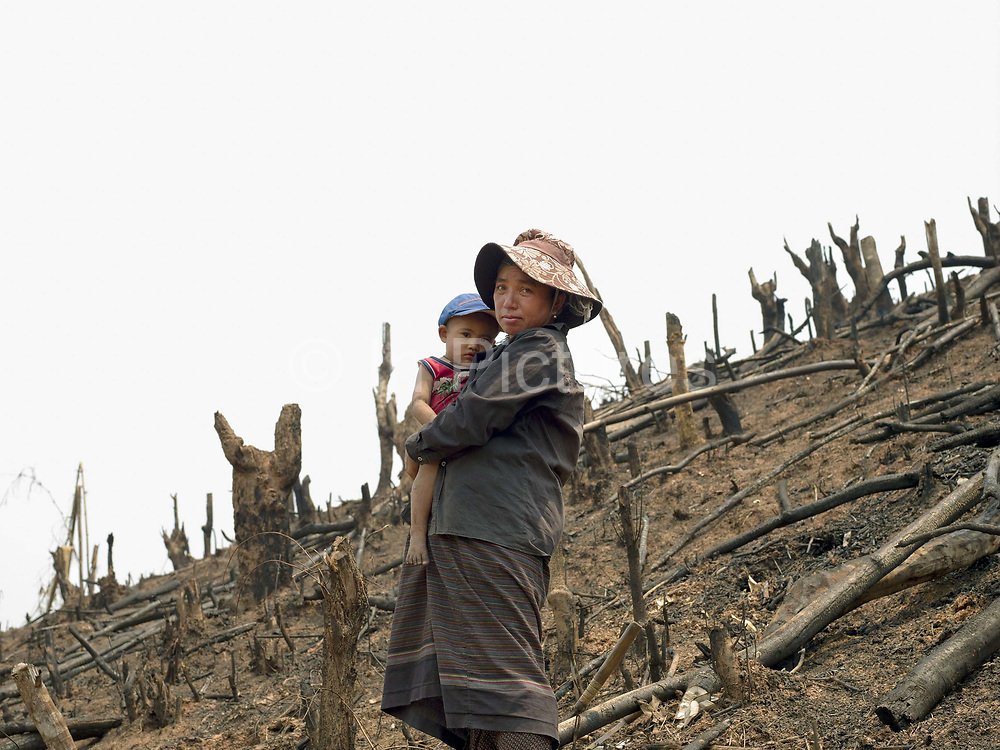 A Phunoi ethnic minority subsistence farmer accompanied by her young son clears her land by slashing and burning to grow hill rice and coffee as a cash crop in Ban Sinesai; Phongsaly province, Lao PDR.  Swidden cultivation or 'hai' in Lao consists of cutting the natural vegetation, leaving it to dry and then burning it for temporary cropping of the land, the ash acting as a natural fertiliser. Shifting cultivation practices, although remarkably sustainable and adapted to their environment in the past, have come under increasing stress in recent decades and are now starting to be a major problem in Lao PDR, causing widespread deforestation and watershed degradation. The practise is gradually being taken over by the planting of permanent cash crops such as coffee.