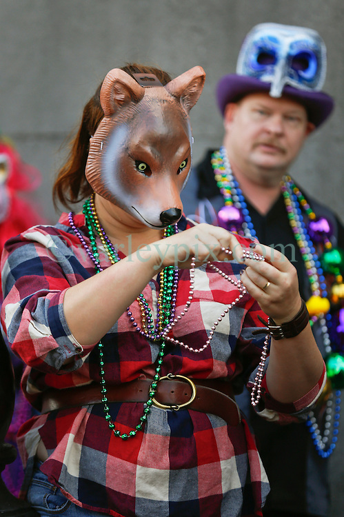 31 January 2016. New Orleans, Louisiana.<br /> Mardi Gras Dog Parade. Bystanders in fox masks look on as the parade winds its way around the French Quarter with dogs and their owners dressed up for this year's theme, 'From the Doghouse to the Whitehouse.' <br /> Photo©; Charlie Varley/varleypix.com