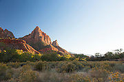 Zion National Park, on the Pa'rus Trail, Utah, United States of America