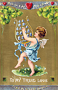 To My True Love, c1910. American Valentine  card.  Cupid dances on grass with naturalised Snowdrops and is playing a lyre of Bluebells. Above him are red hearts symbolising love and four-leafed Shamrock for luck.  In the language of flowers the Snowdrop (Galanthus nivalis) stand for Consolation and the Blueball (Scilla noscripta) for Kindness.  Shamrock or Wood Sorrel (Oxalis acetosella) is a symbol of Ireland.  The identity of St Valentine is uncertain, the most popular candidates are Valentine, bishop of Terni (3rd century) or a Roman Christian convert martyred c270).  St Valentine's Day, celebrated on 14 February, probably replaces the Roman pagan festival of Lupercalia.