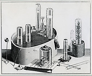 Joseph Priestley's (1733-1804) pneumatic trough and ancillary equipment for studying gases.