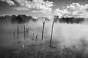 Thermal pond at Rotorua.