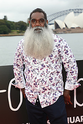 Sydney Premiere of Storm Boy red carpet at St.George OpenAir Cinema, Mrs Macquaries Road Sydney. 10 Jan 2019 Pictured: Trevor Jamieson. Photo credit: Richard Milnes / MEGA TheMegaAgency.com +1 888 505 6342
