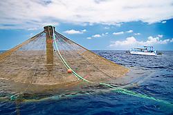 3,000-cubic-meter submersible pen installed in open ocean just off Kona Coast to raise Kona Kampachi, Hawaiian yellowtail, aka almaco jack or kahala, Seriola rivoliana, Kona Blue Water Farms, Big Island, Hawaii, Pacific Ocean