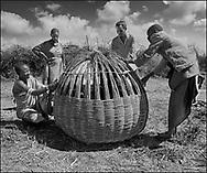 Karamajong men in traditional clothes weaving a grain bin for grain storage - Karamoja, Uganda 1980