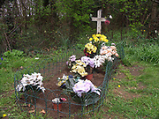 A4TR8B The Unknown Gyspy  Boy s grave Newmarket Suffolk England