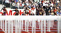 Friidrett , 7. juni 2012 , Diamond League Bislett Games , Christina Vukicevic , Andrea Miller , Eline Berlings , Danielle Carruthers , Tiffany Porter , 100 m h