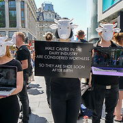 London UK. 3rd June 2017. Animal rights protesters wearing cow masks protest in Leicester Square against Dairy farms and the exploitaiton of cows urging members of the public to go vegan. by See Li