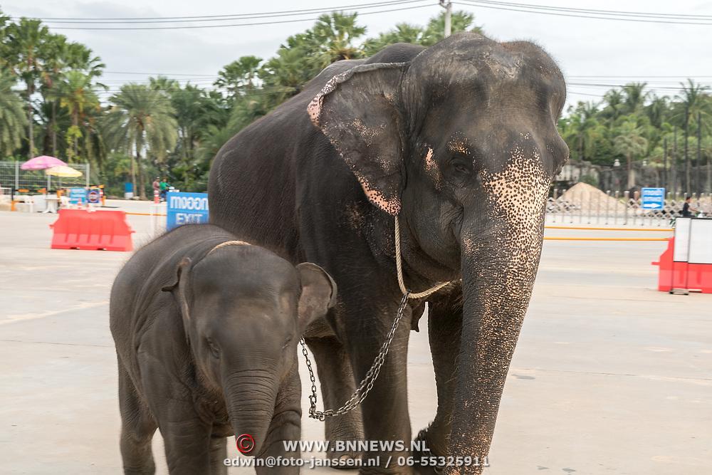 THA/Pattaya/20180722 - Vakantie Thailand 2018,