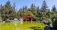 Japanese Bridge and Pond. (19676 x 10345 pixels)