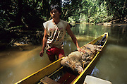1991: Penan hunter with wild boar in longboat. Belaga district, Sarawak, Borneo<br /> <br /> Tropical rainforest and one of the world's richest, oldest eco-systems, flora and fauna, under threat from development, logging and deforestation. Home to indigenous Dayak native tribal peoples, farming by slash and burn cultivation, fishing and hunting wild boar. Home to the Penan, traditional nomadic hunter-gatherers, of whom only one thousand survive, eating roots, and hunting wild animals with blowpipes. Animists, Christians, they still practice traditional medicine from herbs and plants. Native people have mounted protests and blockades against logging concessions, many have been arrested and imprisoned.