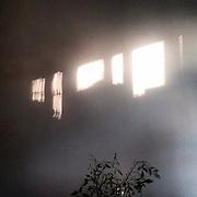 Zizkov. #prag #praha #prague #latergram #czechrepublic #light #besuty #shadow #plant #wall #zizkov