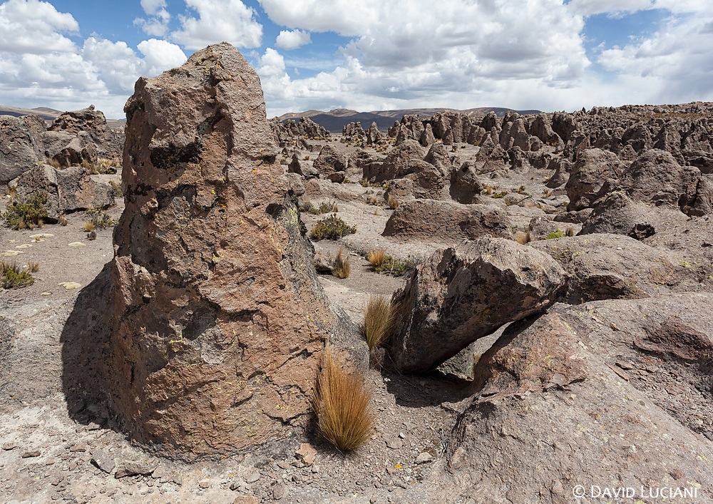 The stone forest of Imata is located 150km northeast from Arequipa.