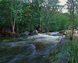 Floodwaters rush down a tributary of the Isdell River in Western Australia's Kimberley region.