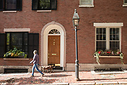 Woman walking dog in W. Cedar Street in the Beacon Hill historic district of Boston, Massachusetts, USA