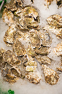 2018 MAY 15 - Fresh oysters for sale in Pike Place Market in Seattle, WA, USA. By Richard Walker