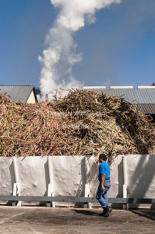 HaIti, Plaine Cul-de-Sac, distillerie de rhum Barbancourt // Haiti, Plaine Cul-de-Sac, Barbancourt rum distilery