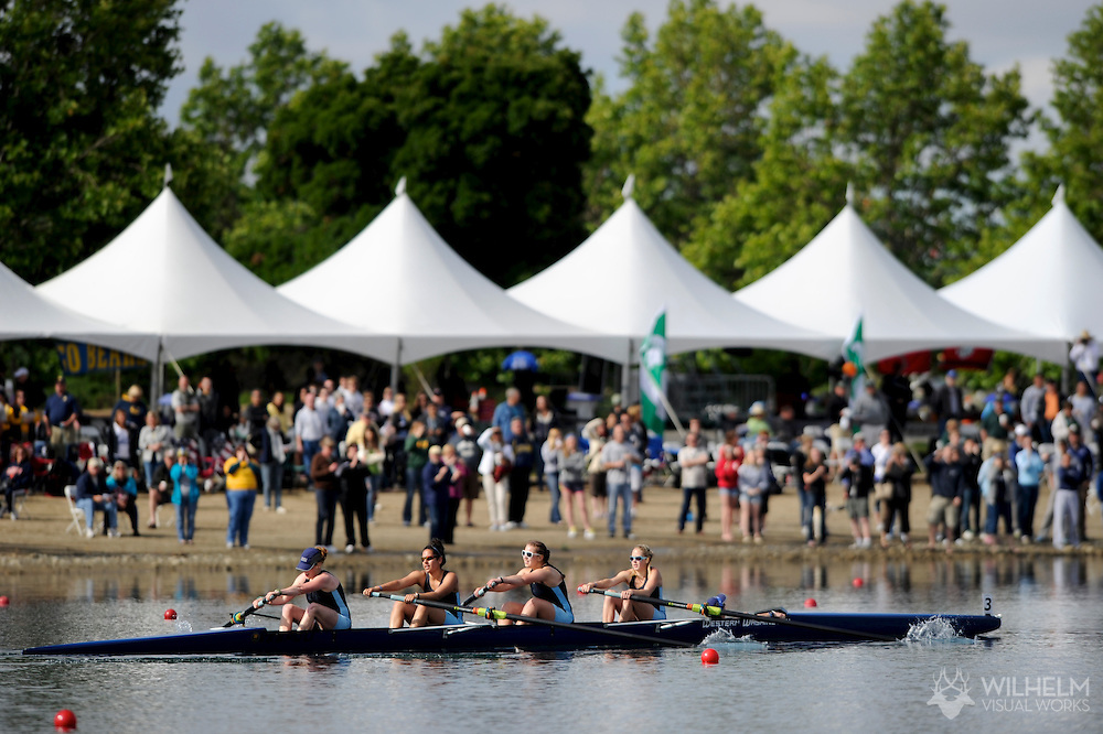 29 MAY 2011: Western Washington University during the Fours Grand Final during the 2011 NCAA Division II Women's Rowing Championship hosted by Washington State University held at the Sacramento State Aquatic Center in Gold River, CA. Western Washington placed 1st to win the national title. © Brett Wilhelm