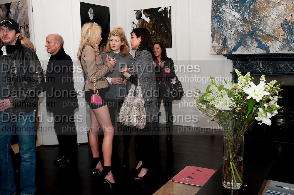 Noelle Reno; Amber Nuttall; Patti Wong, Gino Hollander exhibition, Also a chance to see  the flat at 105-106 Lancaster Gate which is for sale. London. 4 February 2010.