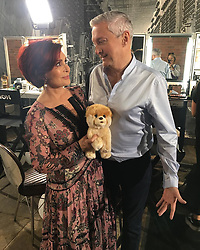 """Sharon Osbourne releases a photo on Instagram with the following caption: """"Day One Auditions in beautiful Liverpool. It's great to be back with naughty Louis Walsh! #xfactor"""". Photo Credit: Instagram *** No USA Distribution *** For Editorial Use Only *** Not to be Published in Books or Photo Books ***  Please note: Fees charged by the agency are for the agency's services only, and do not, nor are they intended to, convey to the user any ownership of Copyright or License in the material. The agency does not claim any ownership including but not limited to Copyright or License in the attached material. By publishing this material you expressly agree to indemnify and to hold the agency and its directors, shareholders and employees harmless from any loss, claims, damages, demands, expenses (including legal fees), or any causes of action or allegation against the agency arising out of or connected in any way with publication of the material."""