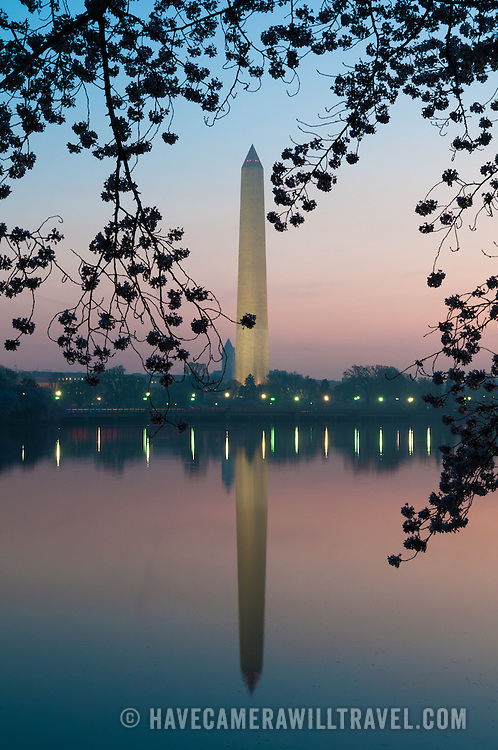 The Washington Monument is reflected on the still waters of the Tidal Basin just before dawn and is framed by cherry blossom flowers. The Yoshino Cherry Blossom trees lining the Tidal Basin in Washington DC bloom each early spring. Some of the original trees from the original planting 100 years ago (in 2012) are still alive and flowering. Because of heatwave conditions extending across much of the North American continent and an unusually warm winter in the Washington DC region, the 2012 peak bloom came earlier than usual.