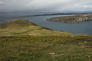 West Point. Looking east over Dunbar on West Fallkand Island.<br /> West Point Island. Off of West Falkland. FALKLAND ISLANDS.<br /> An island owned by Roddy and Lily Napier who have lived there for most of their lives. It is a small sheep farm with about 1,000 sheep and some cattle but now they survive mainly on tourism with several cruize ships visiting during the summer. The island is renowed for its huge Black-browed Albatross Rockhopper Penguin colonies.