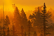 Sunrise and Highland Pond in the Torrance Barrens<br />Torrance Barrens Dark Sky Reserve<br />Ontario<br />Canada