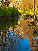 Autumn reflections on Wyomissing Creek, Wyomissing, Berks Co.,PA