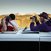 Teten Science Schools tour participants watch a herd of elk forage in the early morning hours. (Greg Peck, Matthew Bart, Sean Baker)