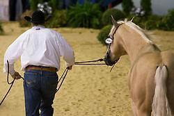 Tom Mc Cutcheon, (USA), Dun Git A Nicadual - Horse Inspection Reining  - Alltech FEI World Equestrian Games™ 2014 - Normandy, France.<br /> © Hippo Foto Team - Dirk Caremans<br /> 25/06/14