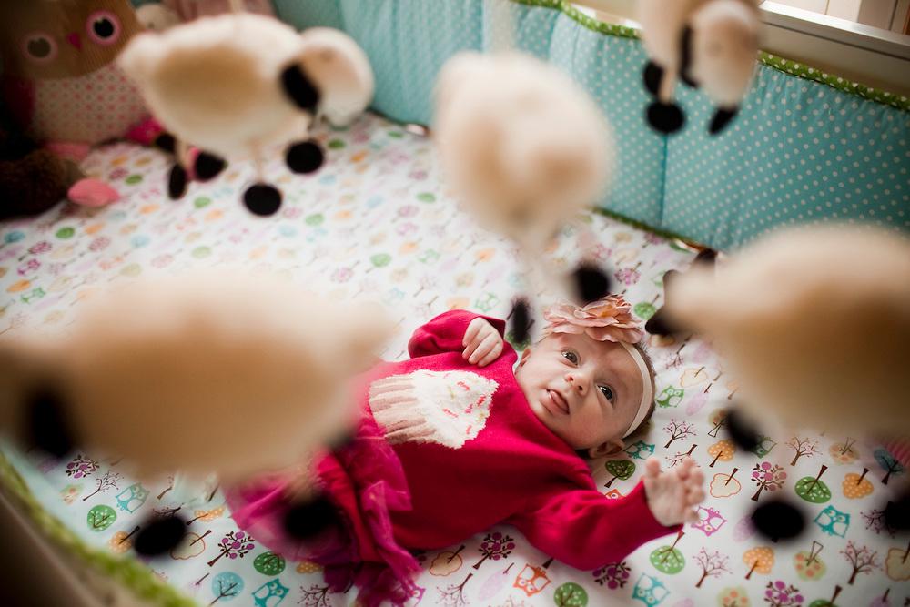 11/11/11 — READING — Viola Phoenix Magro at 6 weeks on Nov. 11, 2011.