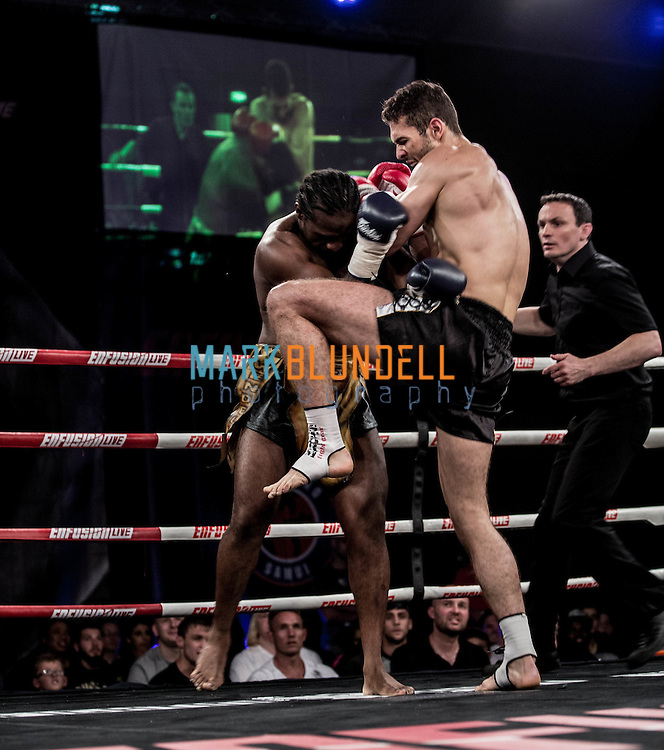 Andrew Tate vs. Wendell Roche
