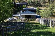 Hunter Valley Farmstay at Fernances Creek Farmstay, Laguna, Hunter Region of NSW, Australia. The Clubhouse is a converted winery set in a beautiful vineyard.