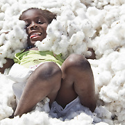 A little girl finds Koumbadiouma's freshly harvested cotton to be a wonderfully comfortable bed to lie in. Kolda, Senegal.