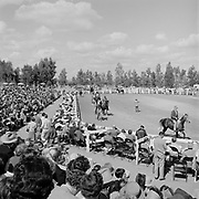 0301-741A Scottsdale Arabian Horse Show at the Arizona Biltmore Hotel. This is one of the early shows (The first show was held in 1955.)