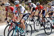 Peter Sagan (SVK - Bora - Hansgrohe), during the UCI World Tour, Tour of Spain (Vuelta) 2018, Stage 3, Mijas - Alhaurin de la Torre 178,2 km in Spain, on August 27th, 2018 - Photo Luis Angel Gomez / BettiniPhoto / ProSportsImages / DPPI
