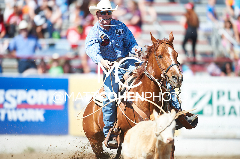 Tie-down roper Kale Comeaux of Livingston, LA competes at the Redding Rodeo in Redding, CA  Tie-down roper Doyle Hoskins of Chualar, CA competes at the Redding Rodeo in Redding, CA<br /> <br /> <br /> UNEDITED LOW-RES PREVIEW<br /> <br /> <br /> File shown may be an unedited low resolution version used as a proof only. All prints are 100% guaranteed for quality. Sizes 8x10+ come with a version for personal social media. I am currently not selling downloads for commercial/brand use.