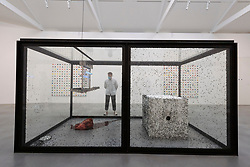 © Licensed to London News Pictures. 06/10/2020. London, UK. CORRECTED CAPTION. Artwork titled A Hundred Years (1998) by artist Damien Hirst is showing as part of his 'End of a Century' exhibition showing at the Newport Street Gallery. Photo credit: Ray Tang/LNP
