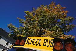 yellow school bus blue sky fall foilage autumn CONCEPT STOCK PHOTOS CONCEPT STOCK PHOTOS