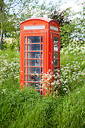 Traditional red telephone box in rural area becoming overgrown through lack of use, Wiltshire, England