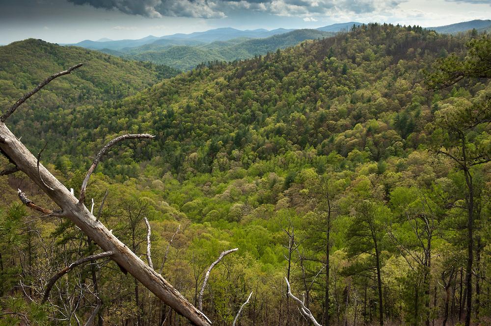 Scenics of Blue Ridge Mountains<br /> Northern Georgia<br /> USA