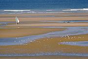 Windskater on a Boulonnais' beach, Nord-Pas-de-Calais region.<br /> Véliplanchiste à roulette sur une plage du Boulonnais, Nord-Pas-de-Calais.