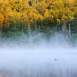 Mist on Little Greenough Pond in Errol, New Hampshire.