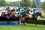 April 29, 2017, 22nd annual Queen's Cup Steeplechase. Jockey Sean McDermott and PLATED lead SARAH JOYCE and Jack Doyle in the CHARLOTTE BUSINESS JOURNAL Handicap Hurdle