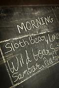 Recent wildlife sitings board, Reni Pani Jungle Lodge, Sohagpur, Madhya Pradesh, India